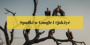 spadki w Google