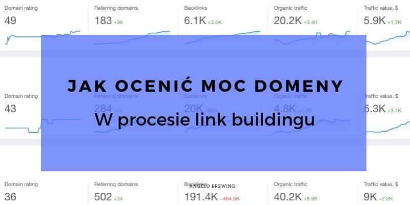 Domain Rating, Trust Flow, Domain Authority, czyli jak ocenić moc domeny w link buildingu i skąd warto pozyskiwać linki